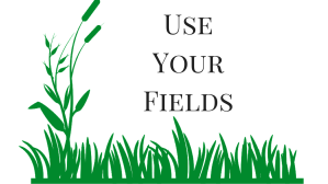use your fields