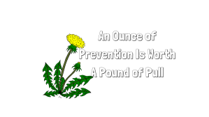 An Ounce of Pull Is Worth A Pound of Prevention
